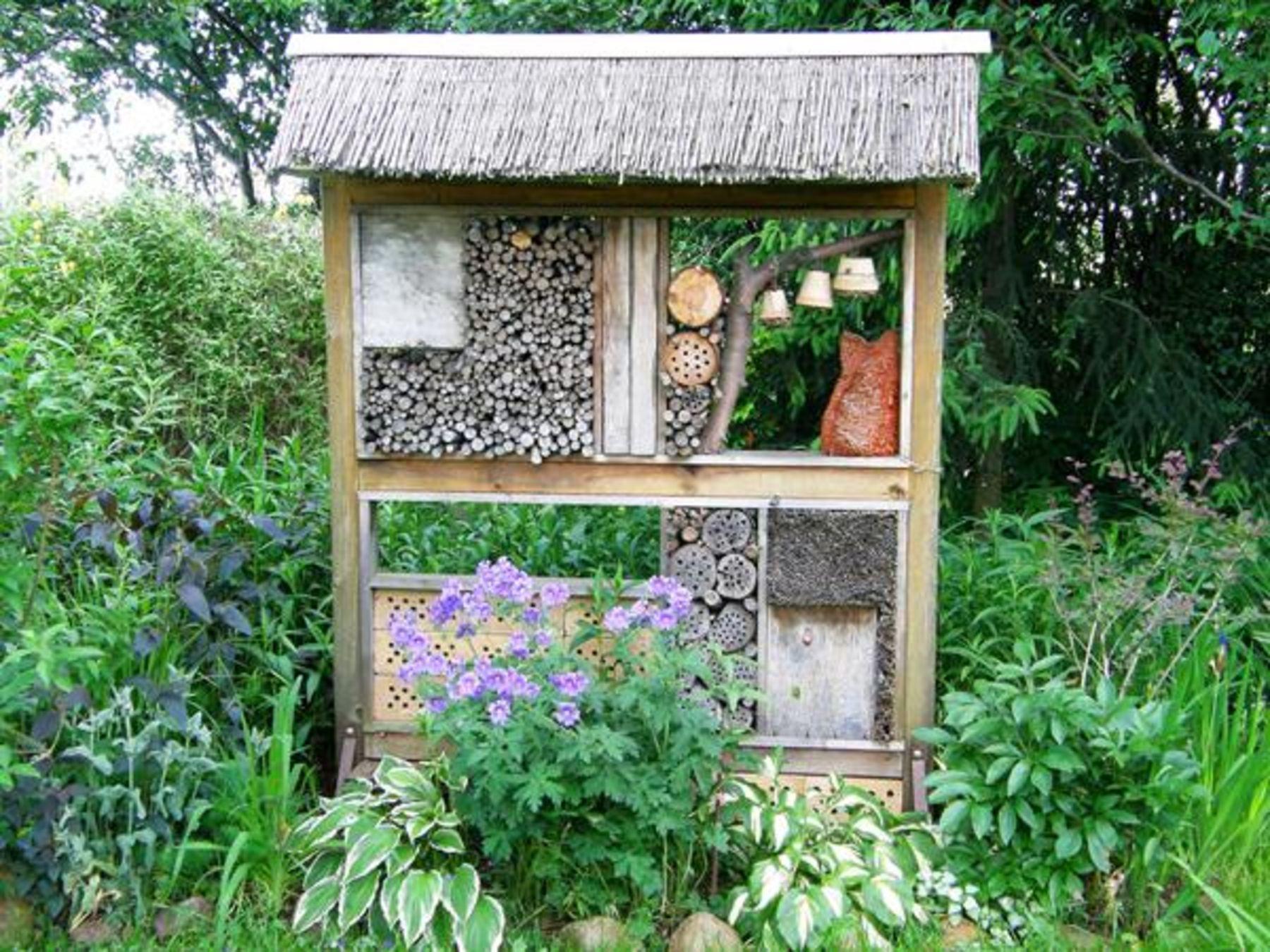 der bienenfreundliche garten koleo umwelt und naturschutz f r kinder in hessen. Black Bedroom Furniture Sets. Home Design Ideas